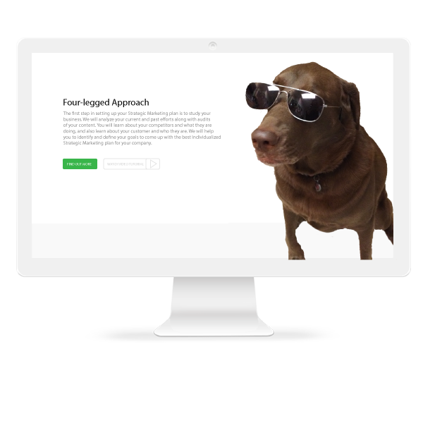 Brown Dog Marketing Agency